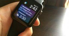 watchOS 4.2 Güncellemesi Yayınlandı